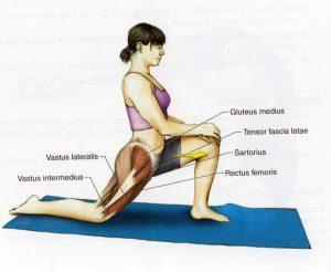 content_stretching__econet_ru-300x246-1-1732676